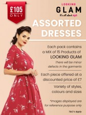 Looking Glam Retro Dress Job Lot - 15 Pcs